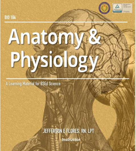 Anatomy and Physiology  (J. Flores)